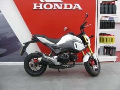 Image of Honda MSX 125-G